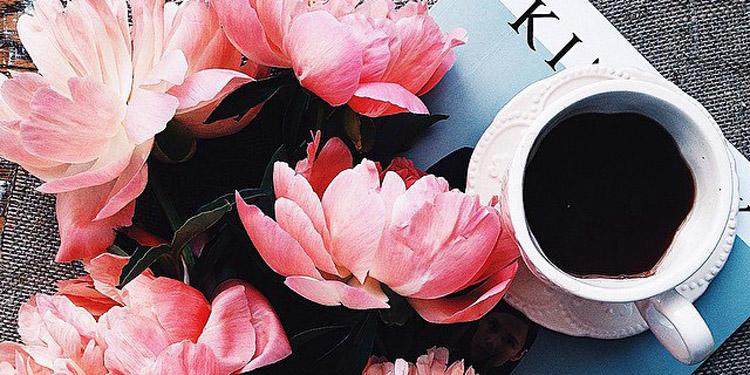 Viết brochure quảng cáo doanh nghiệp - ThS. Phan Nguyễn Khánh Đan
